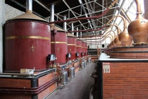 pot-stills-alambic-cognac