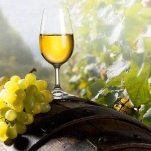 Vinuri Albe Romania